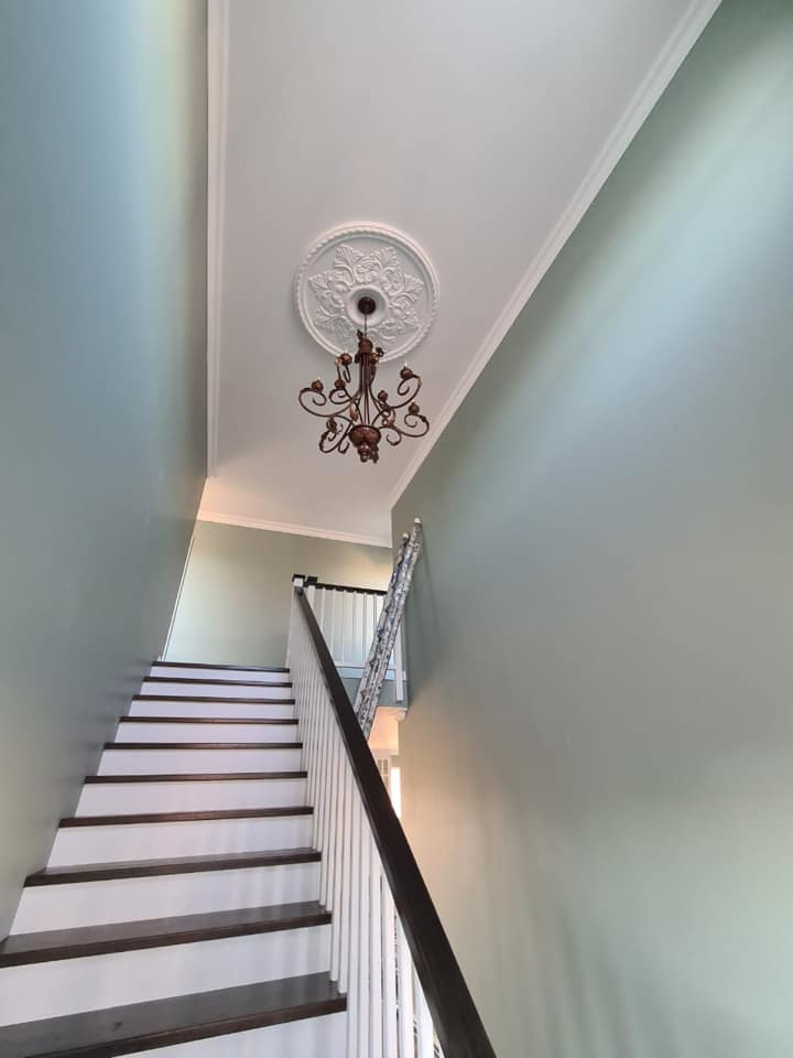 Ceiling rosette & chandelier - Newly built semi-neoclassical colonial house - Schoeman Trio Builders, Mossel Bay